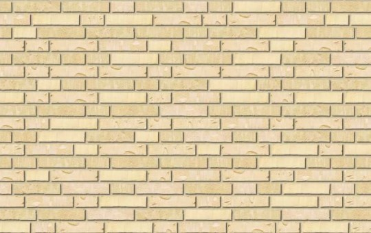 Polar Brick Ruw