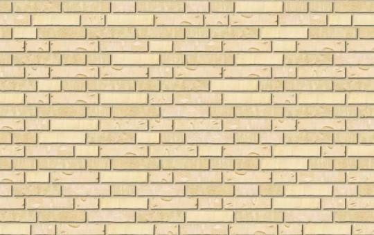 Polar Brick Ruw